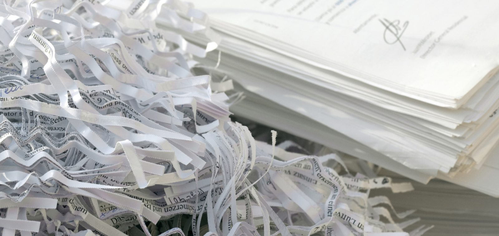 Learn why your business should be shredding your documents.
