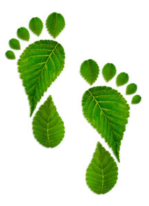 How Document Scanning Can Help Reduce Your Carbon Footprint