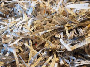 shredded paper micro records